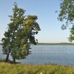 Озеро Яновский Став (п.г.т. Ивано-Франково, Львовская обл.)