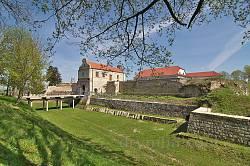 Збаражский замок. Общий вид