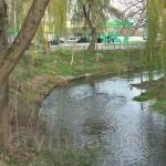 Річка Золота Липа (притока Дністра)