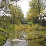 Река Гнезна в Збараже