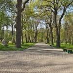 Замковий парк (м.Збараж, Тернопільська обл.)