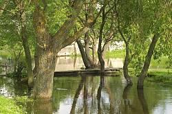 Буськ. Річка Солотвина