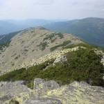 Вид на вершини Лопушну та Боревку. Справа - Ігровище