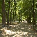 Корсунь-Шевченковский. Главная аллея парка Лопухіних