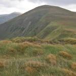 Гора Ребра (2001.1м) (хр.Чорногора)