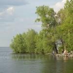 Черкассы. Побережье Днепра в районе Дахновка