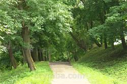 Паркова доріжка до замку