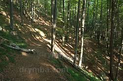 Стежка у бік перевалу Німчич