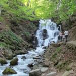 Тропа к водопаду Шипот