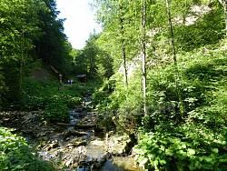 Потік нижче від Женецького водоспаду