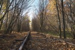 Осінній тунель кохання