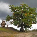 """Поляна казок """"Лукомор'я"""" (село Балівка, Полтавська обл.)"""