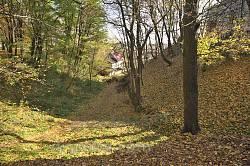 Оборонний яр-рів Острозького замку