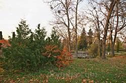 Парк восени