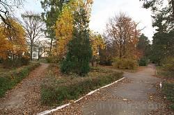 Куточок парку