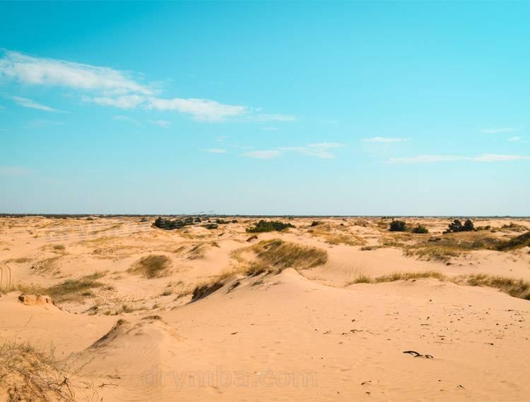 Пустеля в Україні
