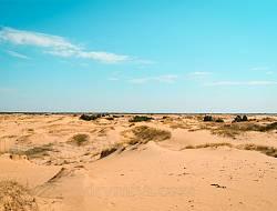 Пустыня в Украине