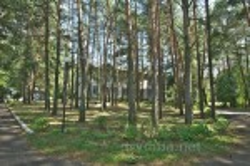 Територія санаторію повністю вкрита сосновим лісом