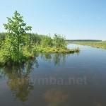 Озеро Луки (Шацькі озера, Волинська обл.)