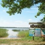 Озеро Перемут (Шацкие озера, Волынская обл.)