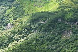Говерлянський водоспад, вид з основного маршруту