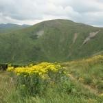Гора Брескул (1911м) (хр.Чорногора)
