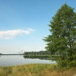 Озеро Крымное (Шацкие озера, Волынская обл.)