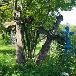 Украинское кладбище (с.Нижнев, Ивано-Франковская обл.)