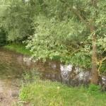 Річка Тлумач у Нижневі