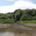 Река Коропец (приток Днестра, Тернопольская обл.)