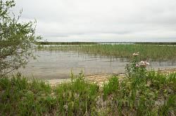 На березі озера Пулемець