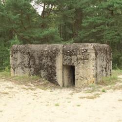 Оборонна лінія Молотова-Карбишева