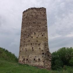 Раковецкий замок (башня) (с.Раковец, Ивано-Франковская обл.)