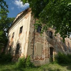 Синагога (п.г.т. Олеско, Львовская обл.)