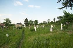 Олесько. Старий цвинтар, вдалині каплиця