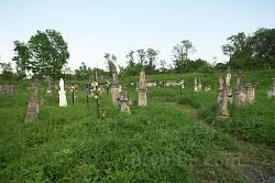 Старий цвинтар у Олесько. Надгробки