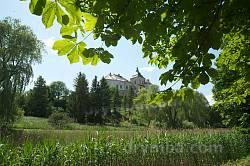 Вид на Олеский замок с севера
