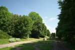 Парк Олесского замка