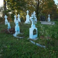 Старое кладбище (с.Пнятын, Львовская обл.)
