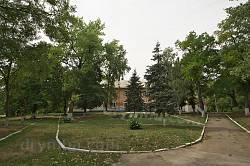 Парк маєтку Дунін-Борковських
