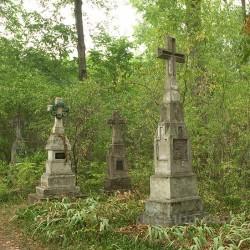 Королевка. Старое кладбище