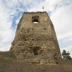 Висіцький замок (руїни башт) (с.Висічка, Тернопільська обл.)