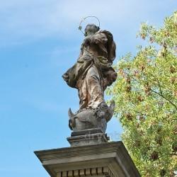 Новосілки. Фіґура Діви Марії на колоні