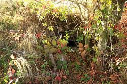Гологоры. Замковые подземелья