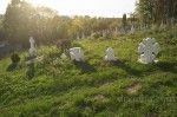 Старий цвинтар у селі Майдан Гологірський