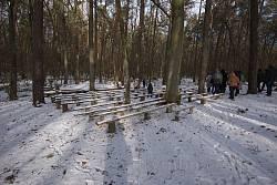 Лекторій та сцена у лісі