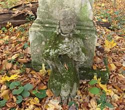 Цвинтар колишнього села Гутисько