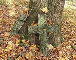 Хрести біля дерева на цвинтарі у Гутиську