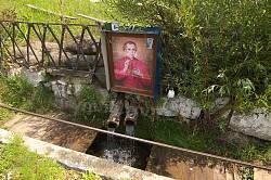 Ікона св. З.Фелінського