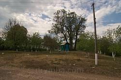 Территория кладбища оцеплена дорожкой